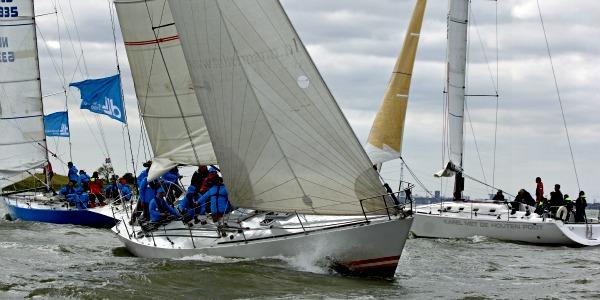 Met een grote groep met meerdere boten zeilen op het IJsselmeer